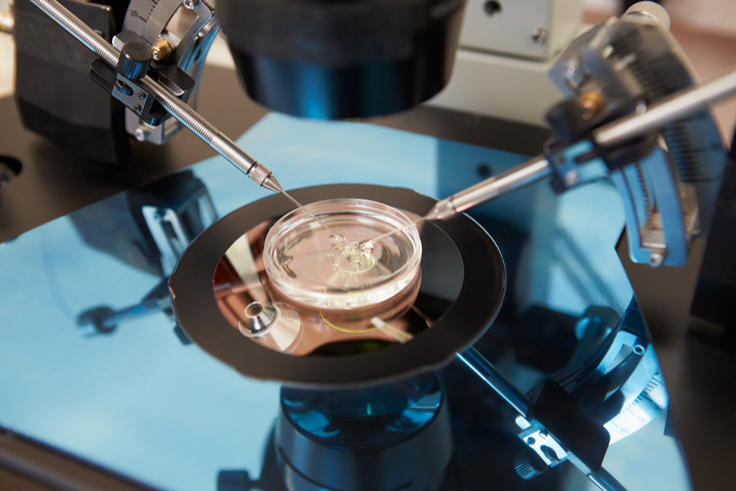 SNP Array Identifies Inherited Genetic Disorder Contributing to IVF Failures