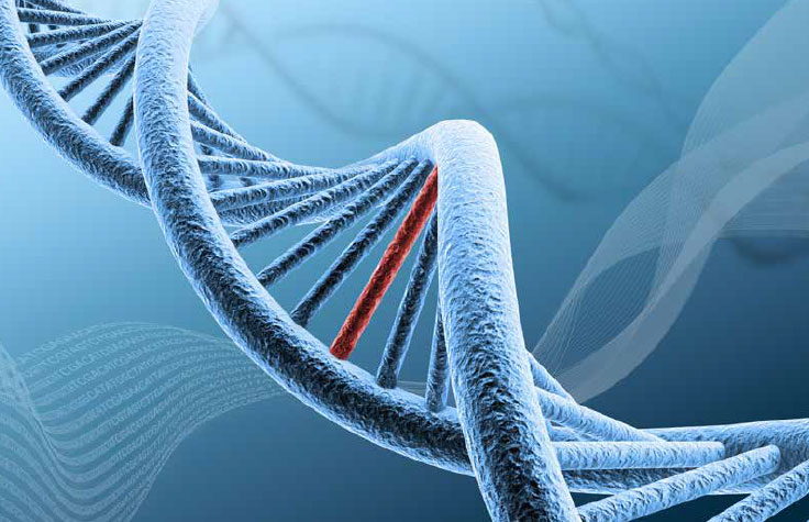 Benefits of Targeted Sequencing