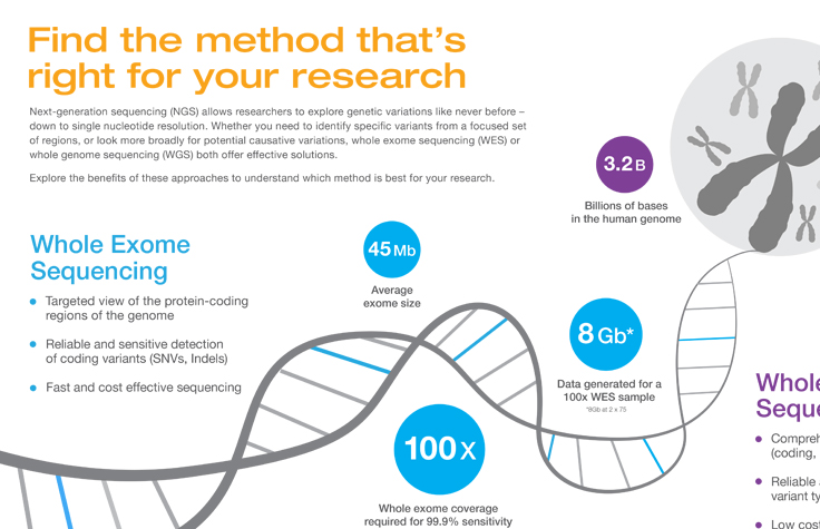 Whole Genome and Exome Sequencing Infographic