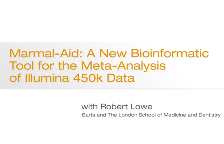 Marmal-Aid: A New Bioinformatics Tool for Meta-Analysis of Illumina 450K Data